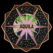 Aquila Soft Enamel Lapel Pin